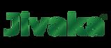 logo1 -01.png