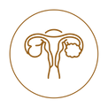 icon-08-08.png