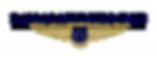 DAC_Logo_0715.fw_-300x117.png