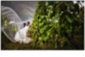 fotograf, fotograf nitra, svadobny fotograf nitra, portretove foto, umelecke foto, svadobne foto, svadobne fotografie, tehotenske foto, eventovy fotograf, sportovy fotograf, 3D, interierovy design, produktova foto, business foto, tehu, fashion, modny