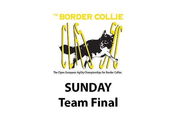 team final.jpg