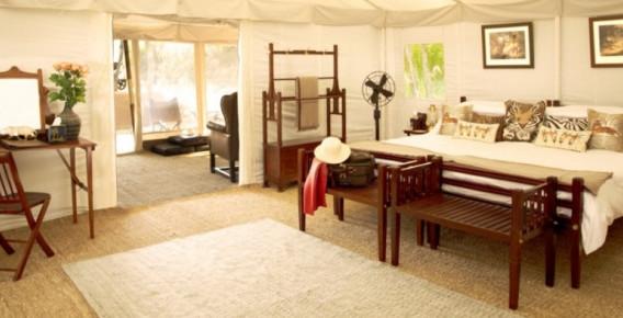 Interior Cottage tent.jpeg