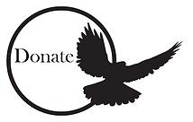 Donate to Spirited Cause