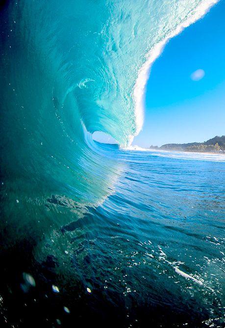 Alan surfed Maverick's.