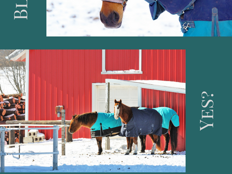 Blankets- The Cold Weather Equestrian Debate