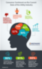 Customer Survey Infographic-01-01-01-01-