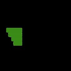 Black and Turquoise Automotive Logo (4).