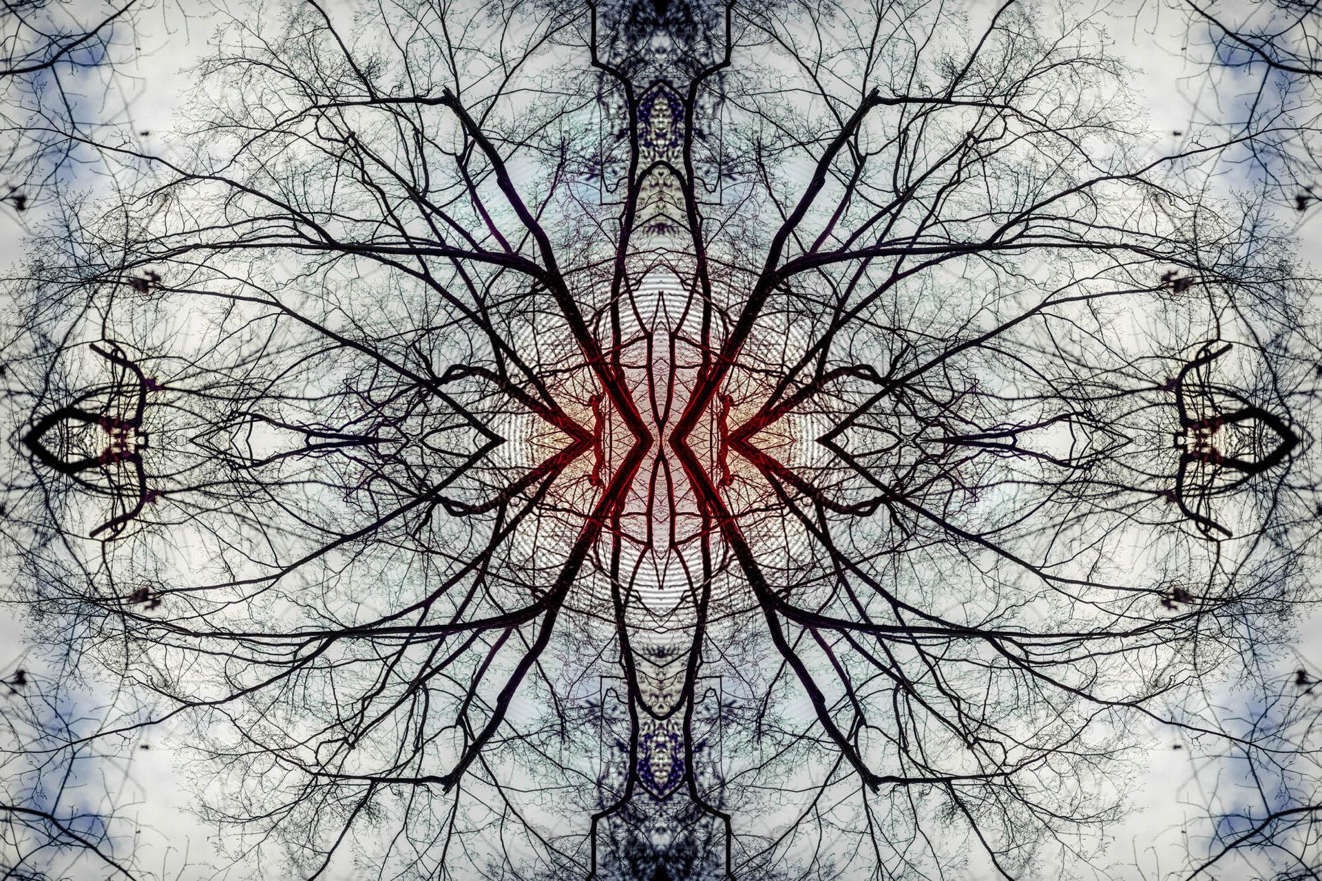 MIR - Winterheart Grove - CLR2.jpg