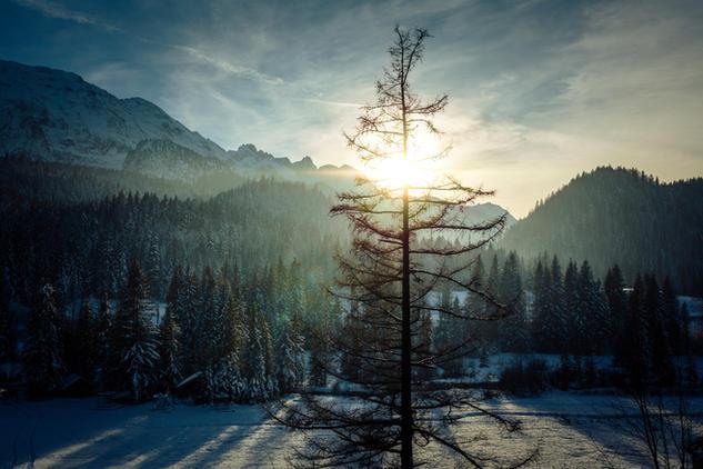 171116 - Winter Wonderland-73.jpg