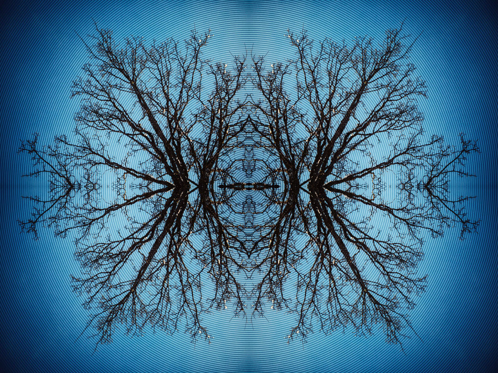 MIR_-_BioWave_Antennæ_-_MED.jpg