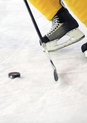 Ligues de Hockey des Etchemins | Mrc des Etchemins