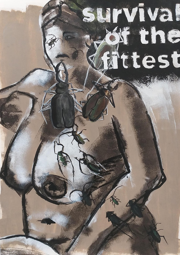Akt und Umwel, Käfer af öper, Umweltkunst