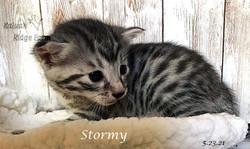 Stormy 5.23.21c