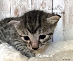 Stormy 5.23.21b