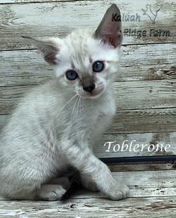 Toblerone 4.11.21a