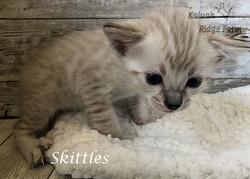 Skittles 3.20.21e
