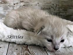 Skittles 3.6.21e