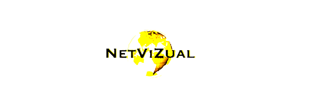 NetVizual.com/social-media Best SEO