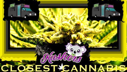 Closest Cannabis Dispensary in Las Vegas Nevada: Best WEED in Las Vegas