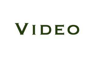 Video SEO Virgina