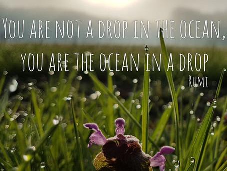 Je bent de oceaan in een druppel.