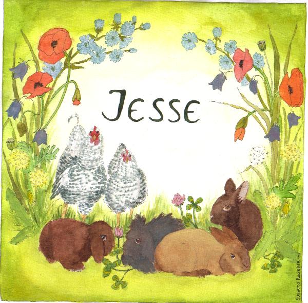 Jesse - geboortekaartje