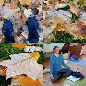 Herfst en yoga