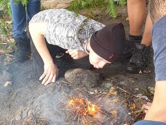 Teamwork im Wald