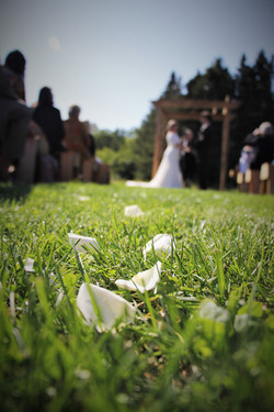 Petals in the aisle