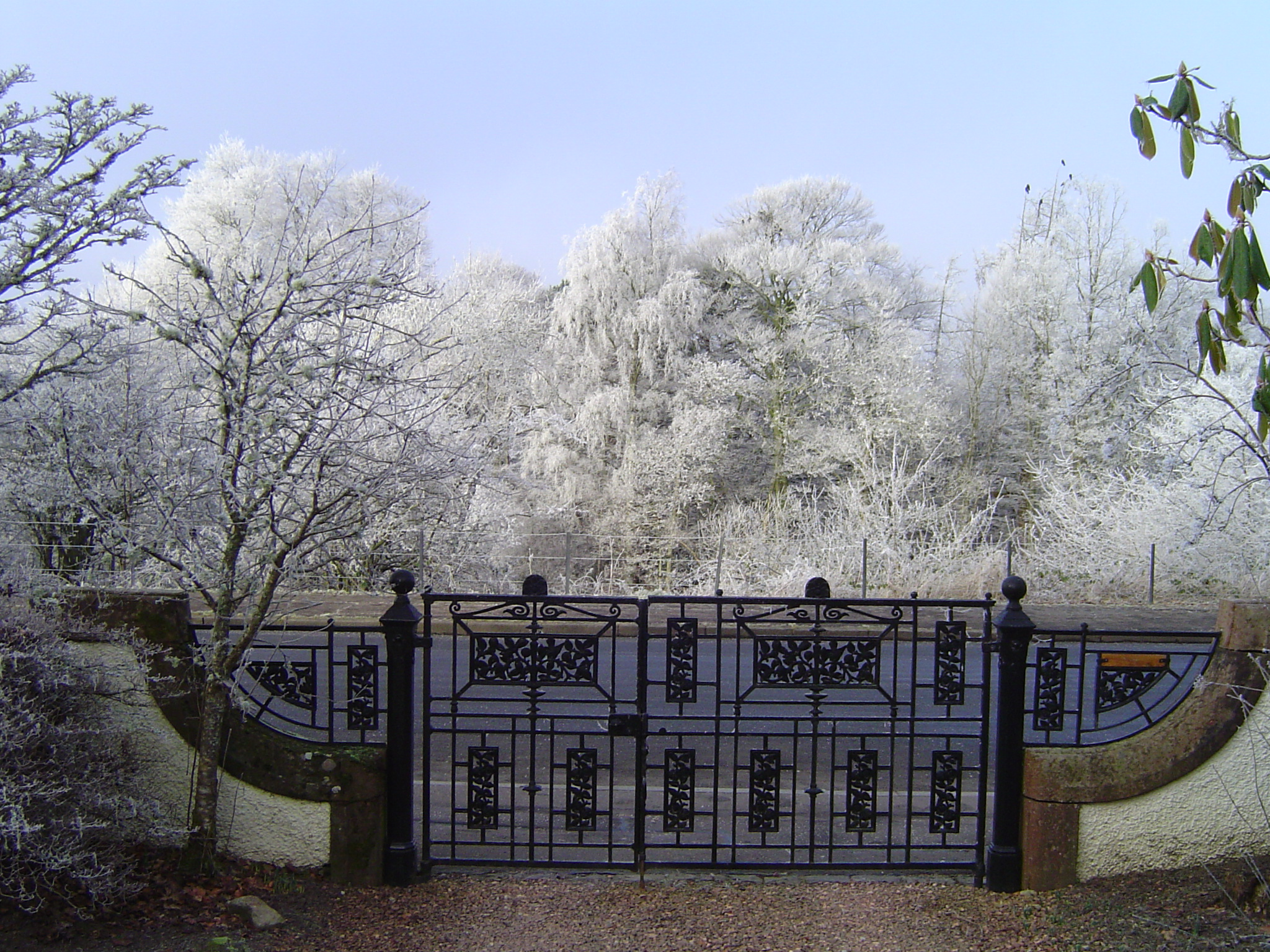 A Frosty Day view from the Drive