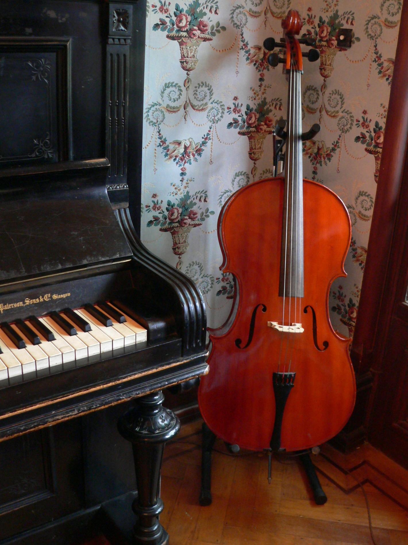 Dunvarlich House Music Room