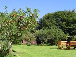 Dunvarlich House Garden