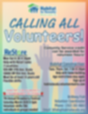 2019 Volunteer Flyer.png