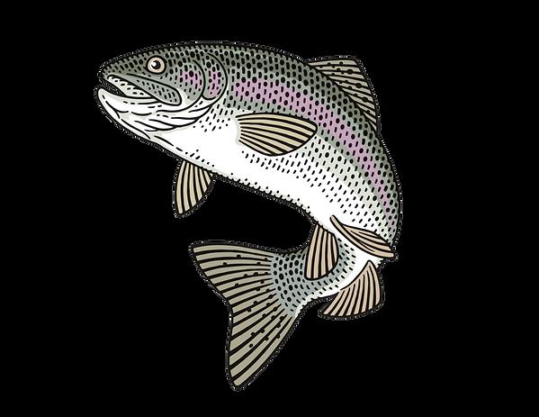 Trout_Logo.png