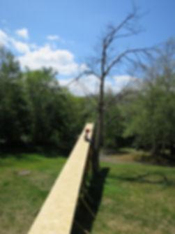 air garden 002.jpg