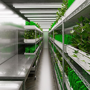 40ft-double-tier-shipping-container-farm