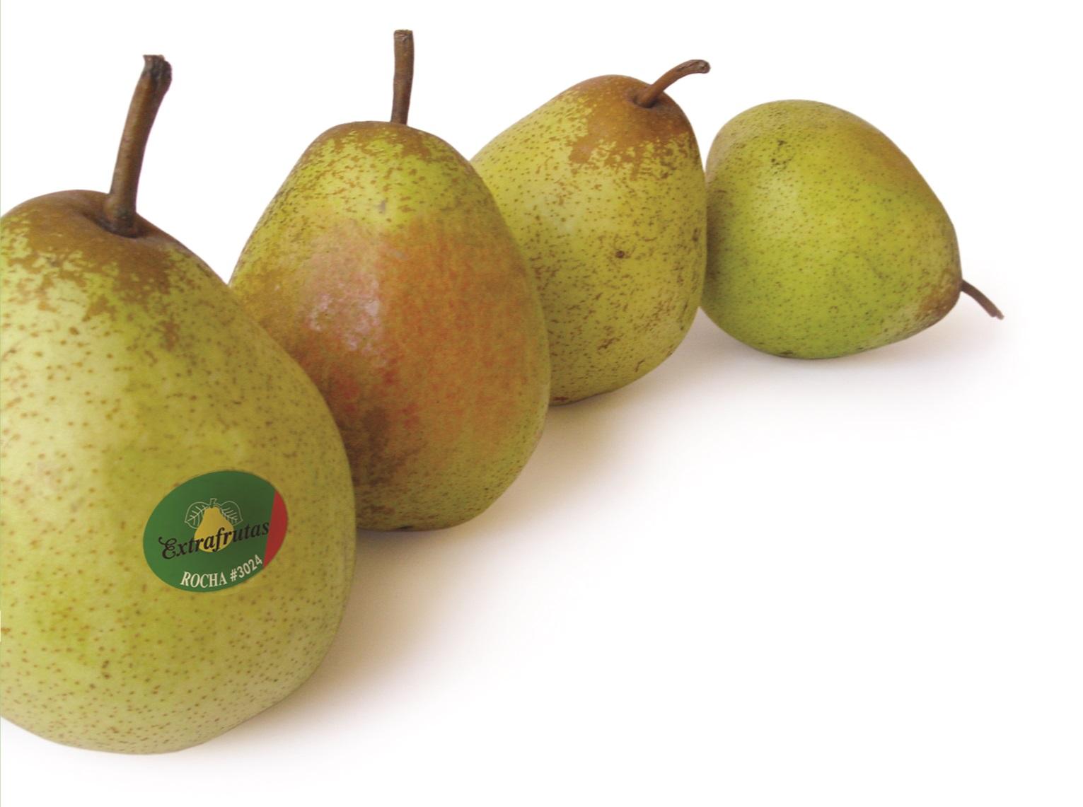 Pêra Rocha Extrafrutas
