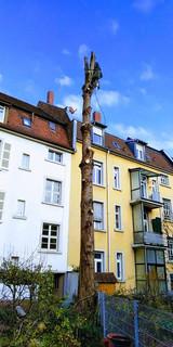Abtragung in einem Innenhof in Karlsruhe