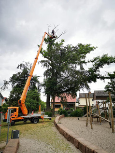 Denkmalpflege im Stadtpark Kandel