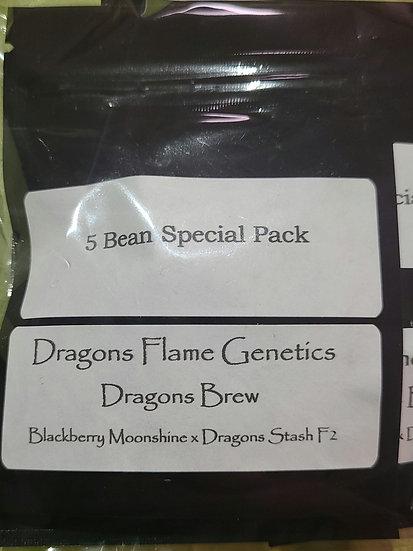 Dragon Brew