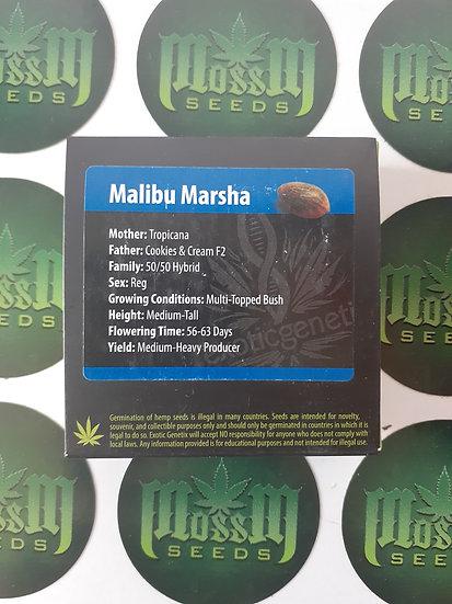 Malibu Marsha