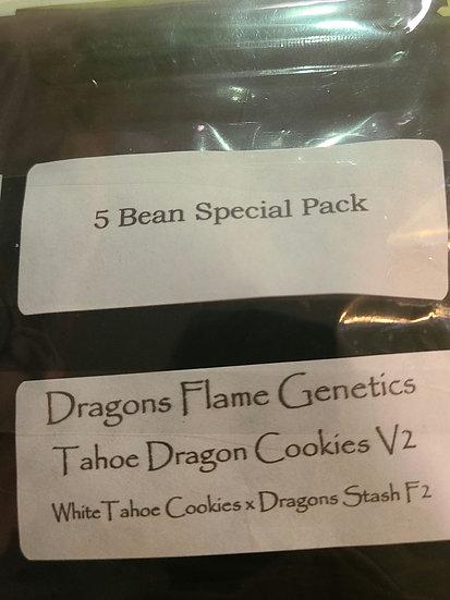 Tahoe Dragon Cookie V2