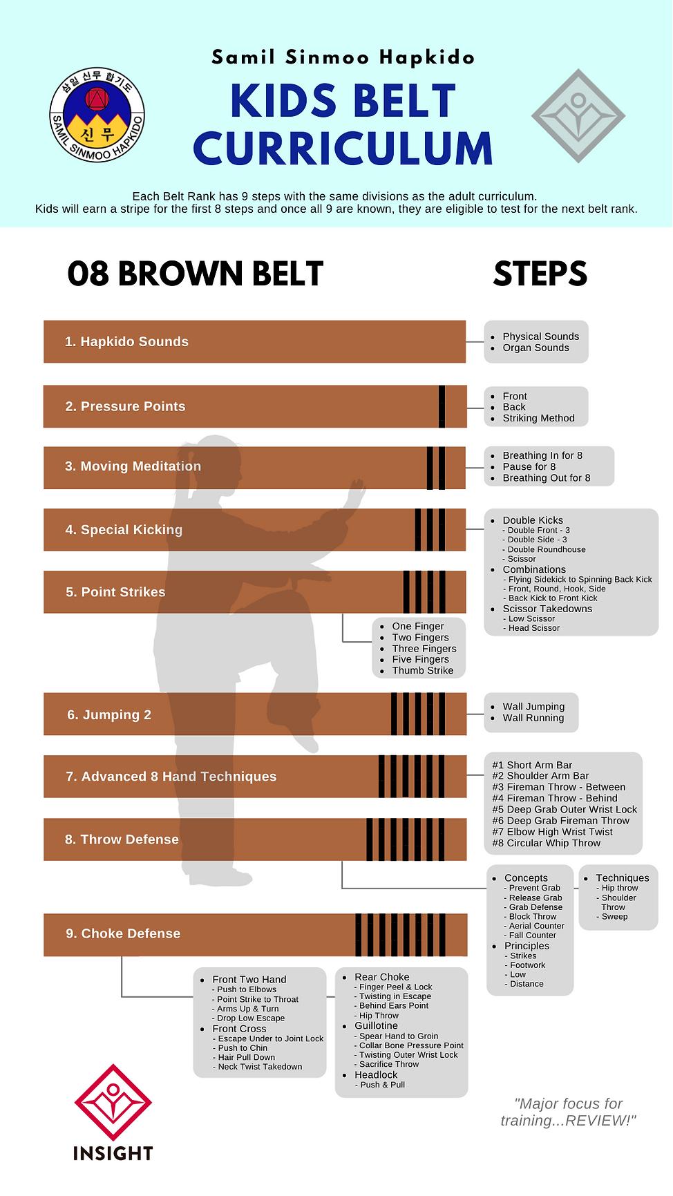 08 BROWN BELT .png
