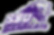 Southwest_Baptist_Bearcats_logo.svg.png
