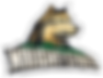 Wright_State_Raiders_logo.svg.png