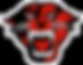 Davenport_Panthers_logo.svg.png