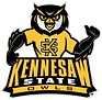 1592_kennesaw_state_owls-mascot-2012.png