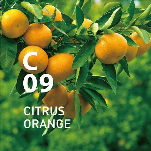 @aroma Air Mist Spray: Citrus Orange