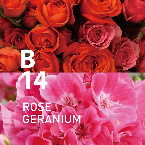 @aroma: B14 Rose Geranium