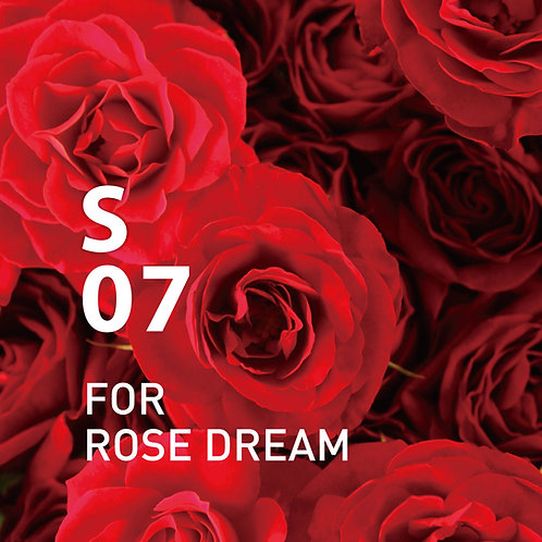 @aroma: S07 For Rose Dream
